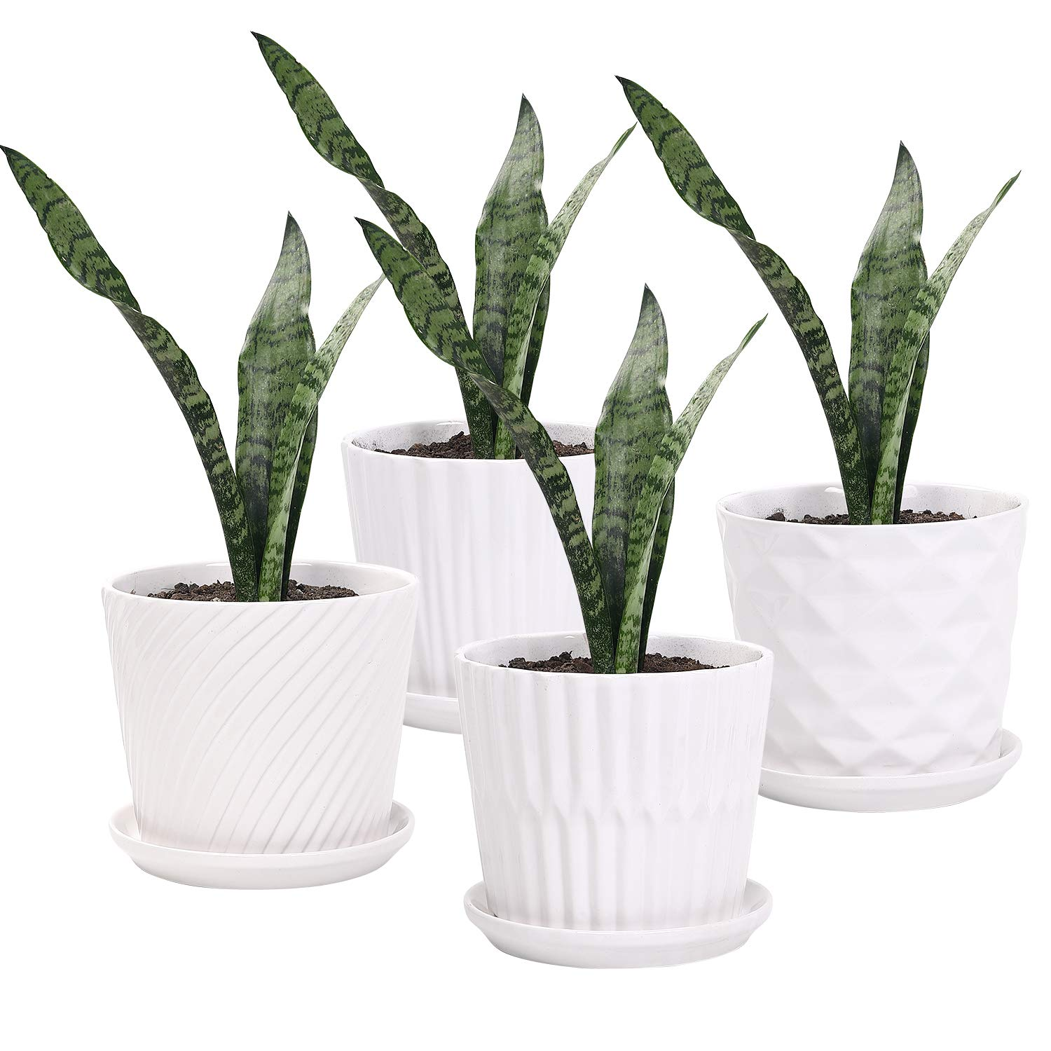 Plant Pots – 5.5 Inch Cylinder Ceramic Planters with Connected Saucer, Pots for Succuelnt and Little Snake Plants, Set of 4, White