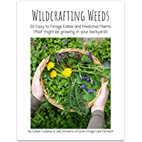 Wildcrafting Weeds: 20 Easy to Forage Edible and Medicinal Plants (that might be growing in your backyard!)