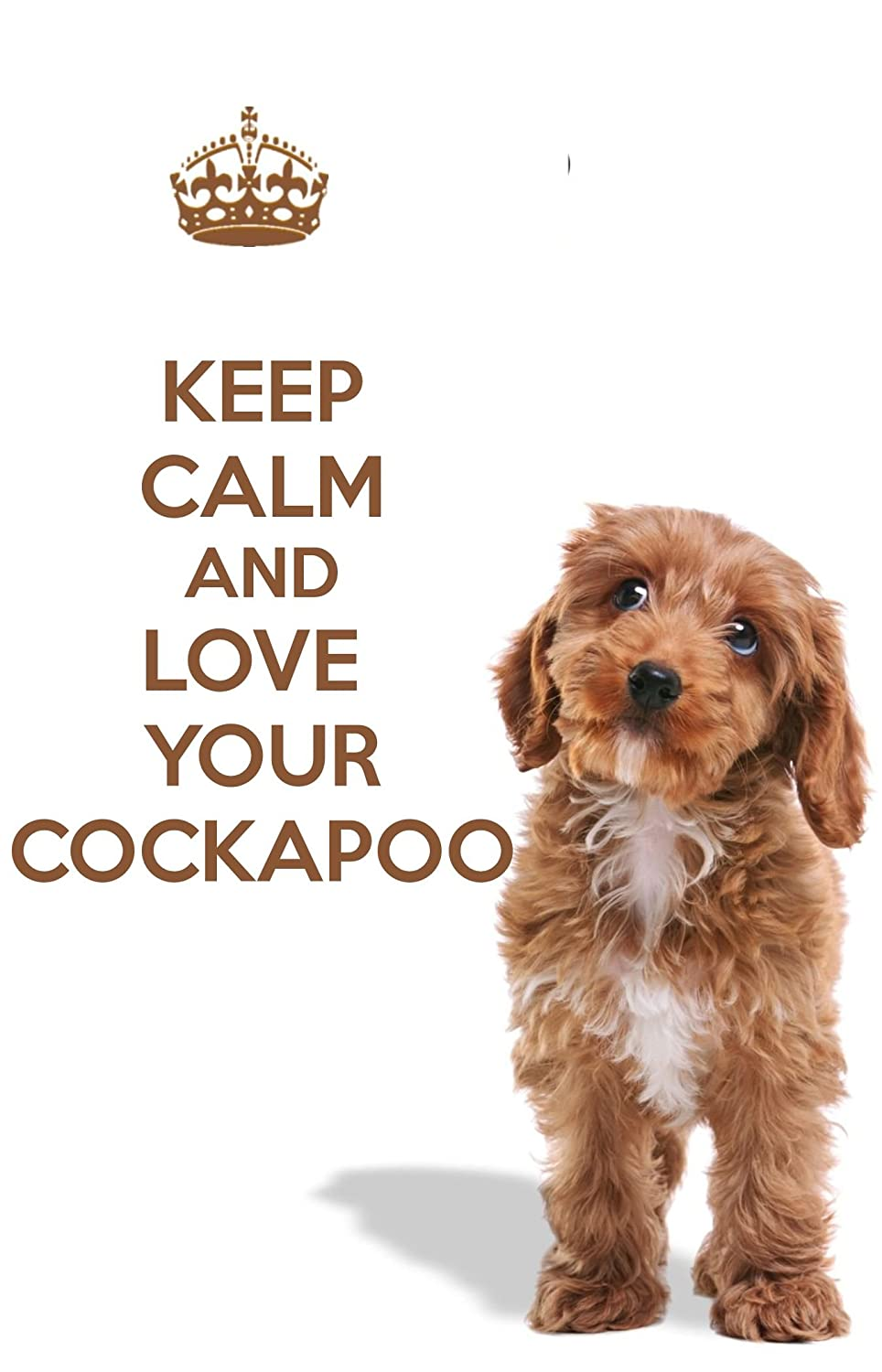 A Fridge Magnet with a Picture of a Cockapoo Puppy Dog with The Words Keep  Calm and Love Your Cockapoo  A Unique Birthday or Christmas Stocking Filler
