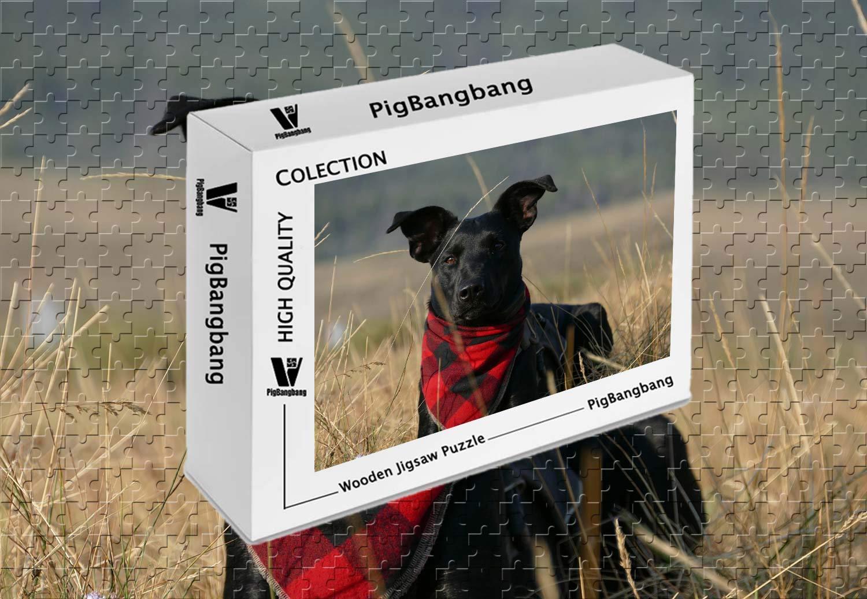 【30%OFF】 pigbangbang、ハンドメイドintellectivゲームプレミアム木製DIY接着のJigsaw Niceペイント – ブラック犬Front – View X Look – View 300ピースジグソーパズル(20.6 X 15.1