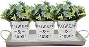 Arlai Patio Indoor Outdoor Herb Pots, Set of 3 Rustic Multi-use Flower Pot and Tray Windowsill Herb Pots