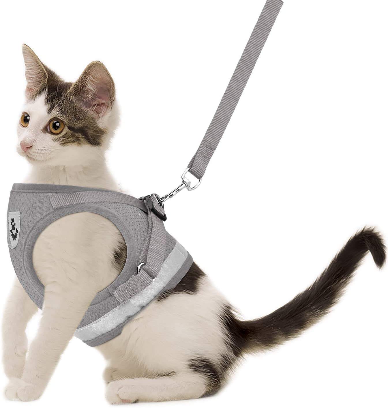 gauterf-cat-harness