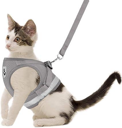 Kitten vest with patch Classic Tweed Cat Harness Escape Proof Custom made | ALLCATSGOOD Handmade Vest