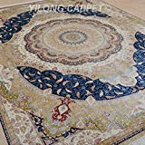 Yilong 9 x12  Persian Silk Rugs Traditional Oriental Qum Medallion with Paisley Pattern Hand Knotted Home Carpet...