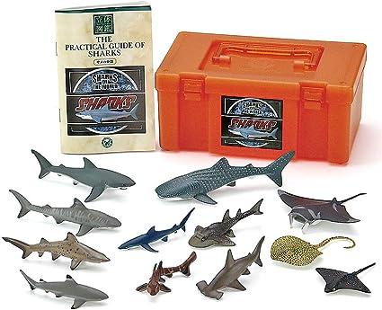 Colorata Real Figure box Set Shark Japan