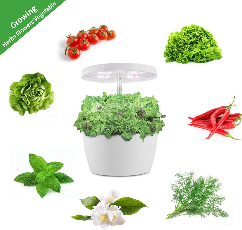 4 Pot Indoor Hydroponics Growing System Indoor Hydroponics Growing System Kit Indoor Herb Kit-Indoor Hydroponics Growing Nutrients Pot Kit