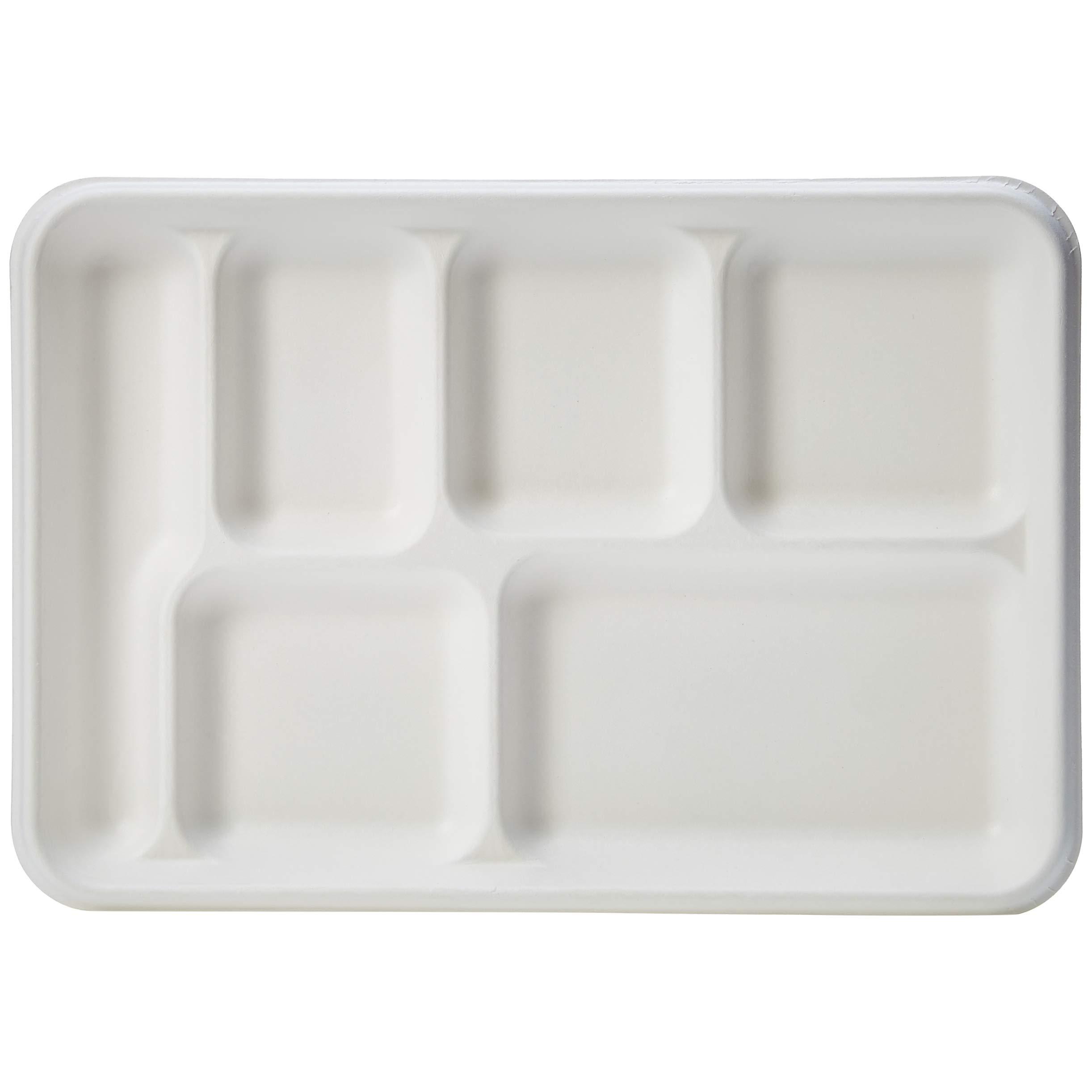 AmazonBasics Compostable Tray, 6-Compartment, 12.7 x 8.7 x 1 Inches, 250 Trays by AmazonBasics