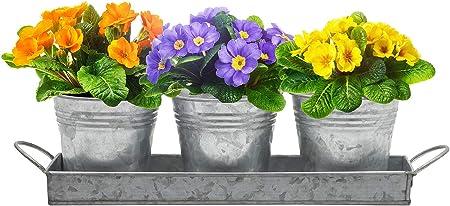 Conjunto de 3 Macetas Cubo De Hierro Uso Interior//Exterior Flores Hierbas Plantas jardín
