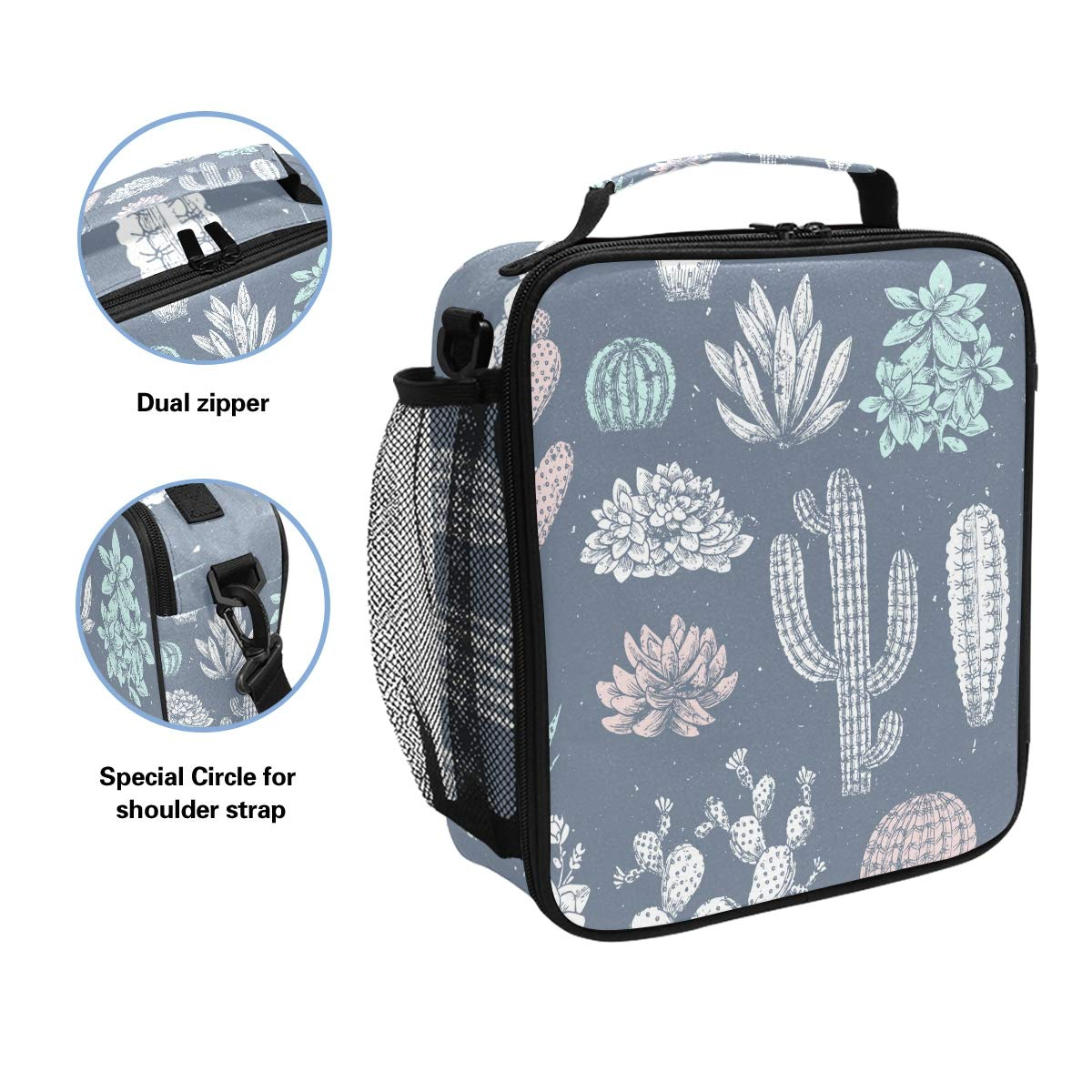 Amazon.com: Fiambrera aislada con suculento con cactus bolsa ...