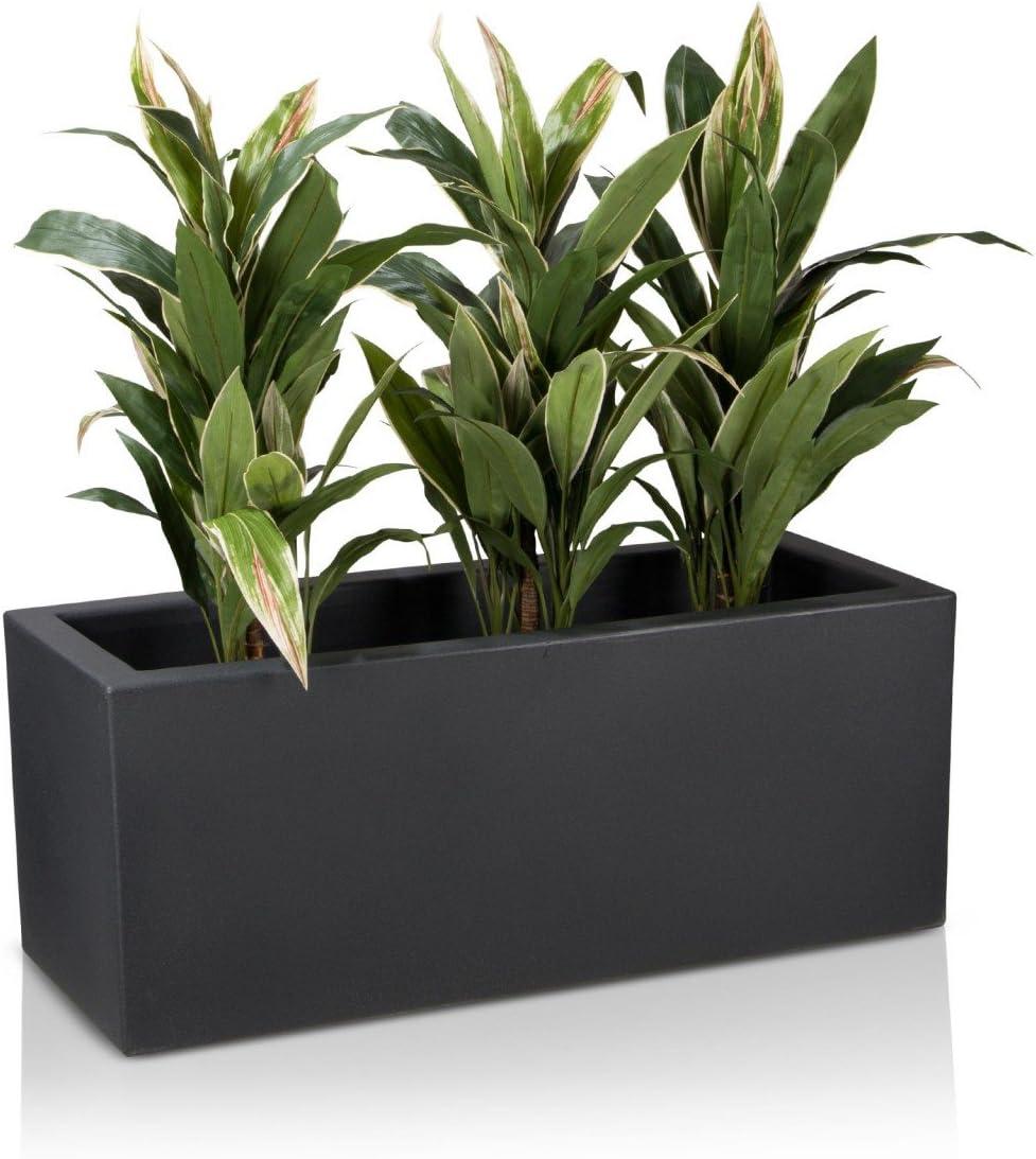 14,5 x 25 cm lys et pivoines pour plantes grimpantes orchid/ées /æ/— Lot de 12 tuteurs demi-ronds en plastique pour plantes en pot
