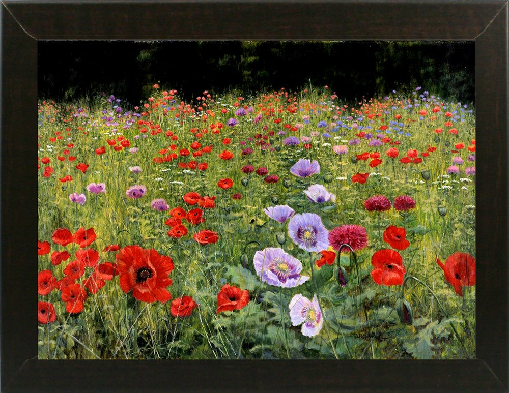 Field of Poppies by Bill Makinson 20.38
