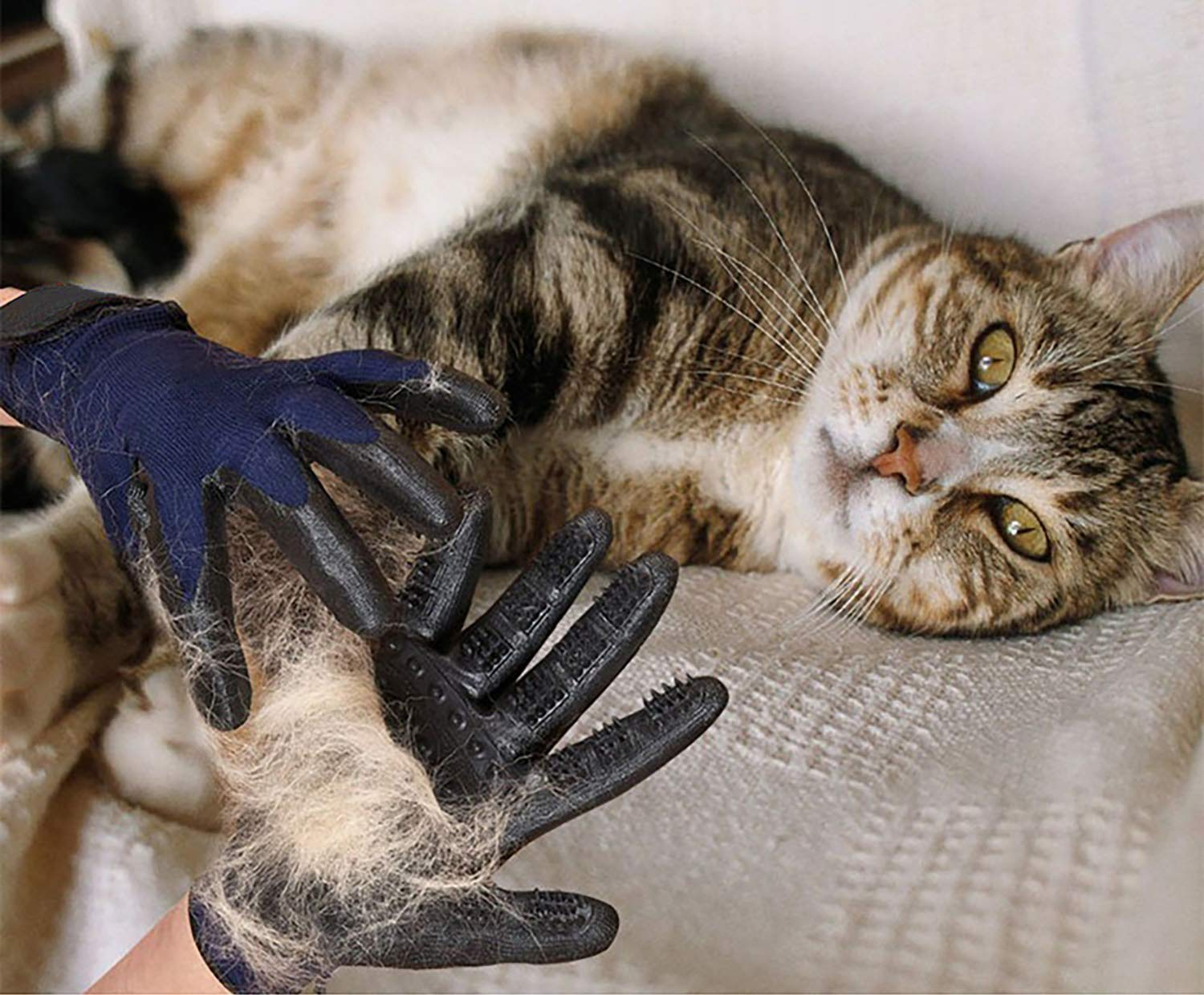 MMTX Pet Massage Gloves - 1 Pair Rubber Deshedding Brush Glove Pets Hair Remover Mitts Pet Bath Grooming Massage Tool for Cats and Dogs with Long & Short Fur by MMTX (Image #3)