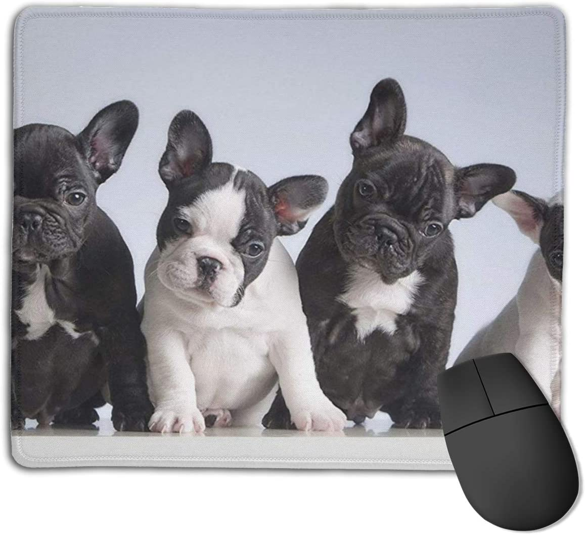 Joseph Mouse Pad,Non Slip Waterproof Rubber Base Mousepad for Laptop,Adorable French Bulldog Puppies Dog