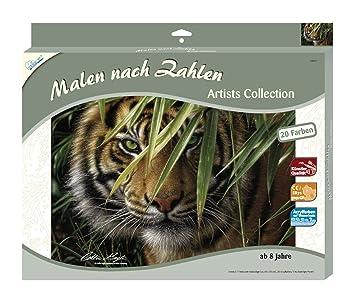 Mammut 108007 Dipingere Con I Numeri Soggetto Tigre Amazon It