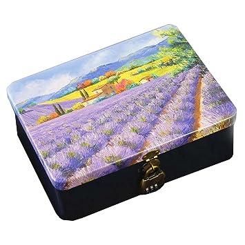 Caja de lata de regalo de hojalata caja de lata con cerradura (Lavanda): Amazon.es: Oficina y papelería