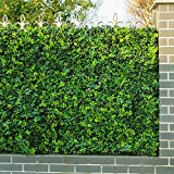 Artificial Ivy Fence, Garden Ivy Privacy Fence, Plastic Boxwood Hedges Panels ( 12pcs 20''x20'') (12, 1)