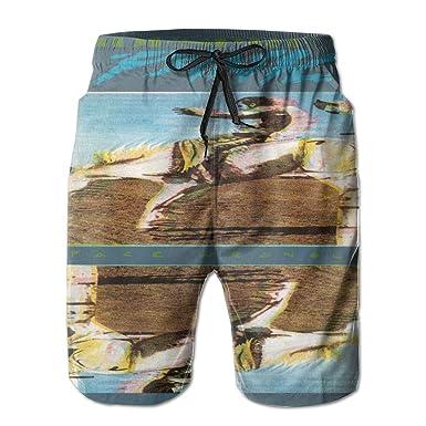 109d64443aca7 Amazon.com: Men's Widespread Panic Space Wrangler Swim Trunks Quick Dry  Lace Beach Board Shorts Mesh Beachwear: Clothing