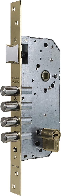 Tesa Assa Abloy R200B666L Cerradura de Seguridad Monopunto con Cilindro T60, Cromado