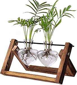 Kingbuy Glass Desktop Planter with Retro Wooden Stand and Plant Terrarium vase (2 Hearts) for Indoor Office Desk Decor Accessories