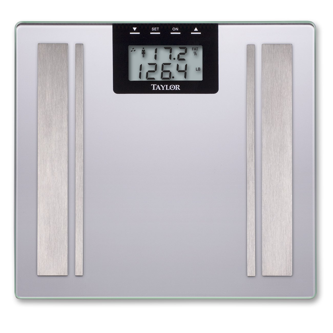 Taylor Precision Products Digital Body Fat Analyzer Scale by Taylor Precision Products