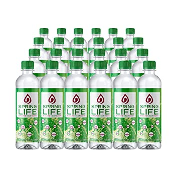 Spring Life 5 MG Hemp Extract Infused Bottled Water | All-Natural Balanced  PH Water | No