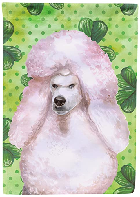 Carolines Treasures Bb9891chf White Standard Poodle St Patricks Decorative Canvas Outdoor Flag House Size Multicolor
