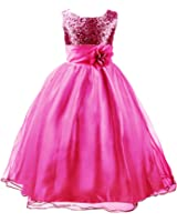 Amazon.com: Bow Dream Flower Girl's Dress Sequins Tulle