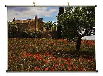 Amazon.com: Finca at Mallorca, Spain - Canvas Wall Scroll ...