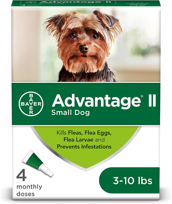 Amazon Com Advantage Ii 4 Dose Flea Treatment For Small Dogs Flea Treatment For Small Dogs 3 10 Pounds Pet Flea Drops Pet Supplies