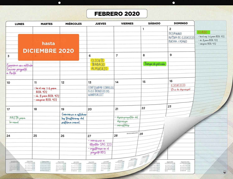Mejor valorados en Calendarios de pared & Opiniones útiles