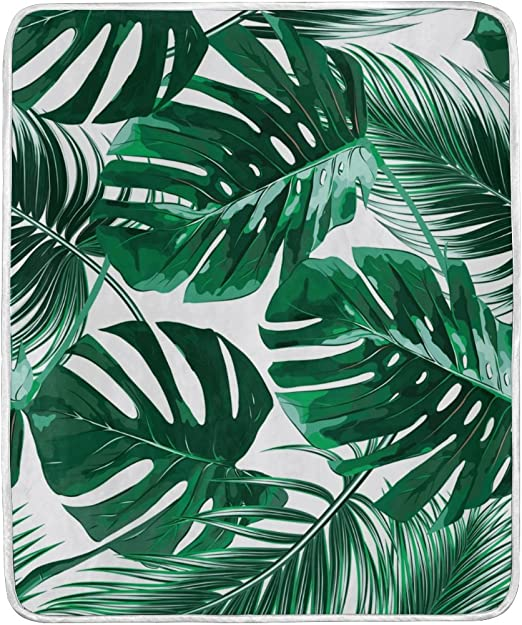 Amazon Com Alaza Tropical Green Palm Leaves Crystal Velvet Throw Blanket For Bed 50 X 60 Inch Kids Baby Girls Colorful Painting Couch Blanket Throw Decor Home Kitchen A closer look at a tropical green leaf while water drops slide on its top in slow motion. alaza tropical green palm leaves crystal velvet throw blanket for bed 50 x 60 inch kids baby girls colorful painting couch blanket throw decor