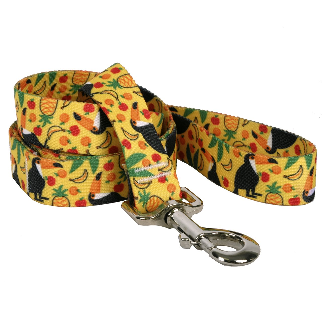 Yellow Dog Design Fruity Tucan Dog Leash 3/4'' Wide and 5' (60'') Long, Small/Medium by Yellow Dog Design