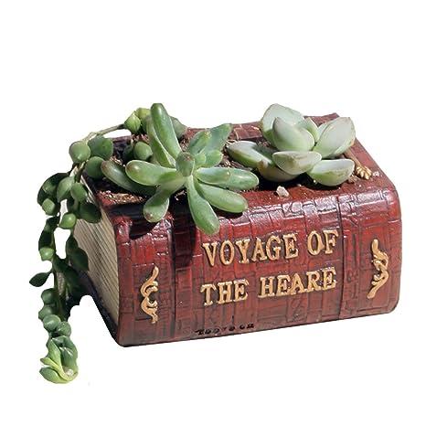 Sun Kea Charming Planter Pot Literature Book Design Succulent Planter  Flower Pot/Plant Box Container