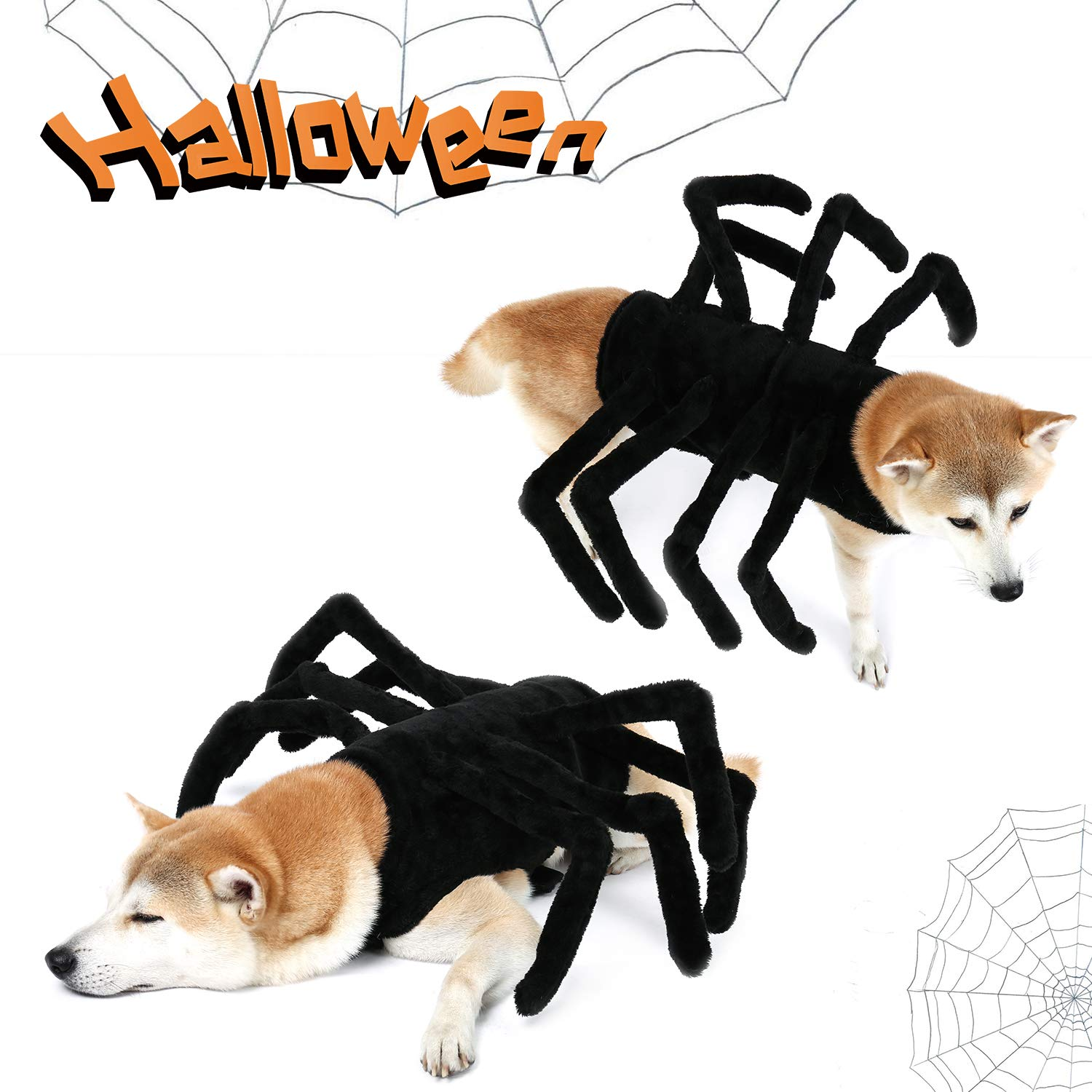PAWZ Road Dog Spider Costume Halloween Pet Costumes with Furry Spider Legs from Small to Large Size - Large by PAWZ Road