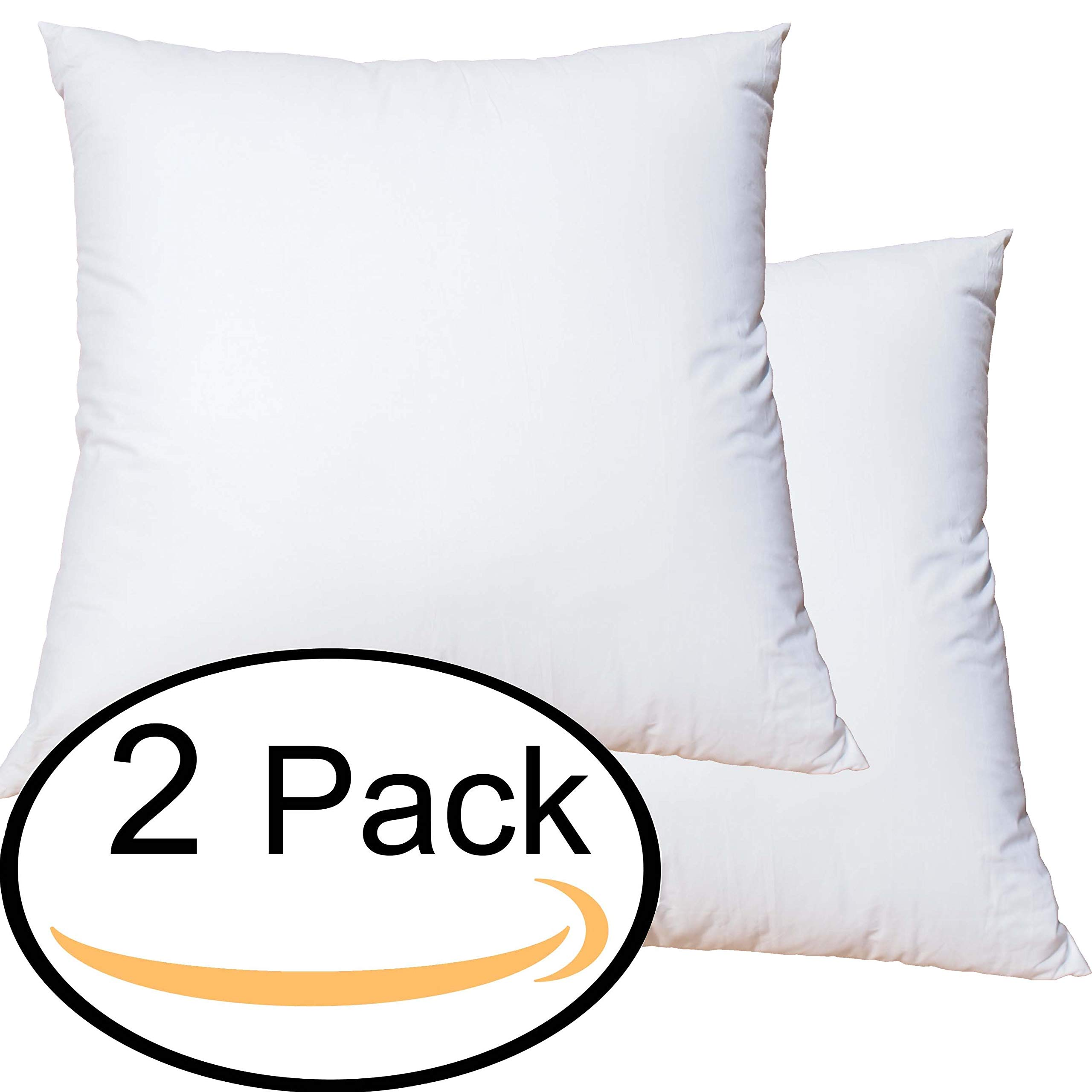 Featherlite Quill Free Down Like Feather Pillow Form Insert for Sham (24 Inch by 24 Inch Set of 2)