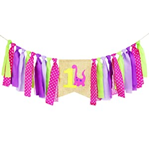 Ecore Fun 1st Birthday Party Decoration Supply High Chair Banner Bunting for Baby Girl - Pink Dinosaur Theme