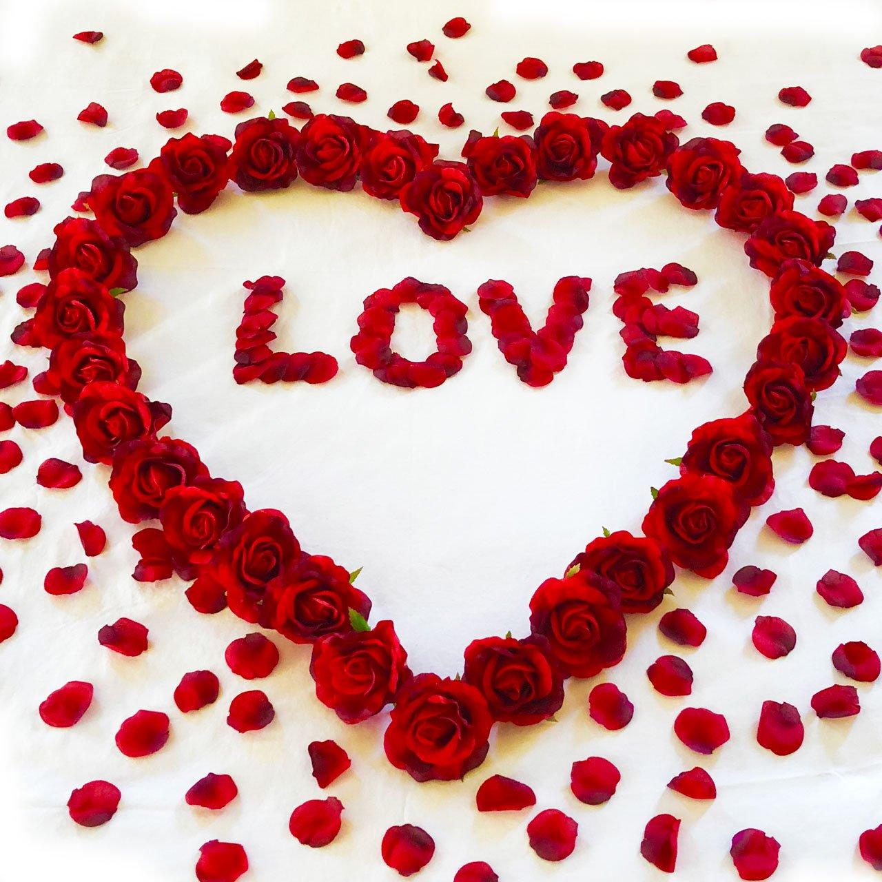 Amazoncom Red Roses Petals Love Anniversary Decorations