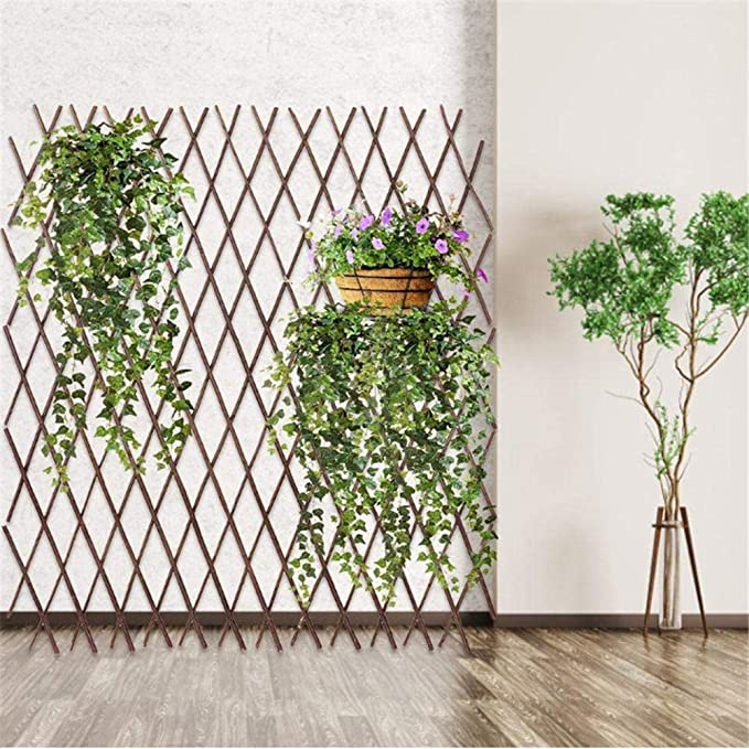 recinzione rampicante per piante da fiore da giardino in espansione supporto per fiori a scomparsa per piante rampicanti Pannelli per recinzione Traliccio in legno espandibile per giardino