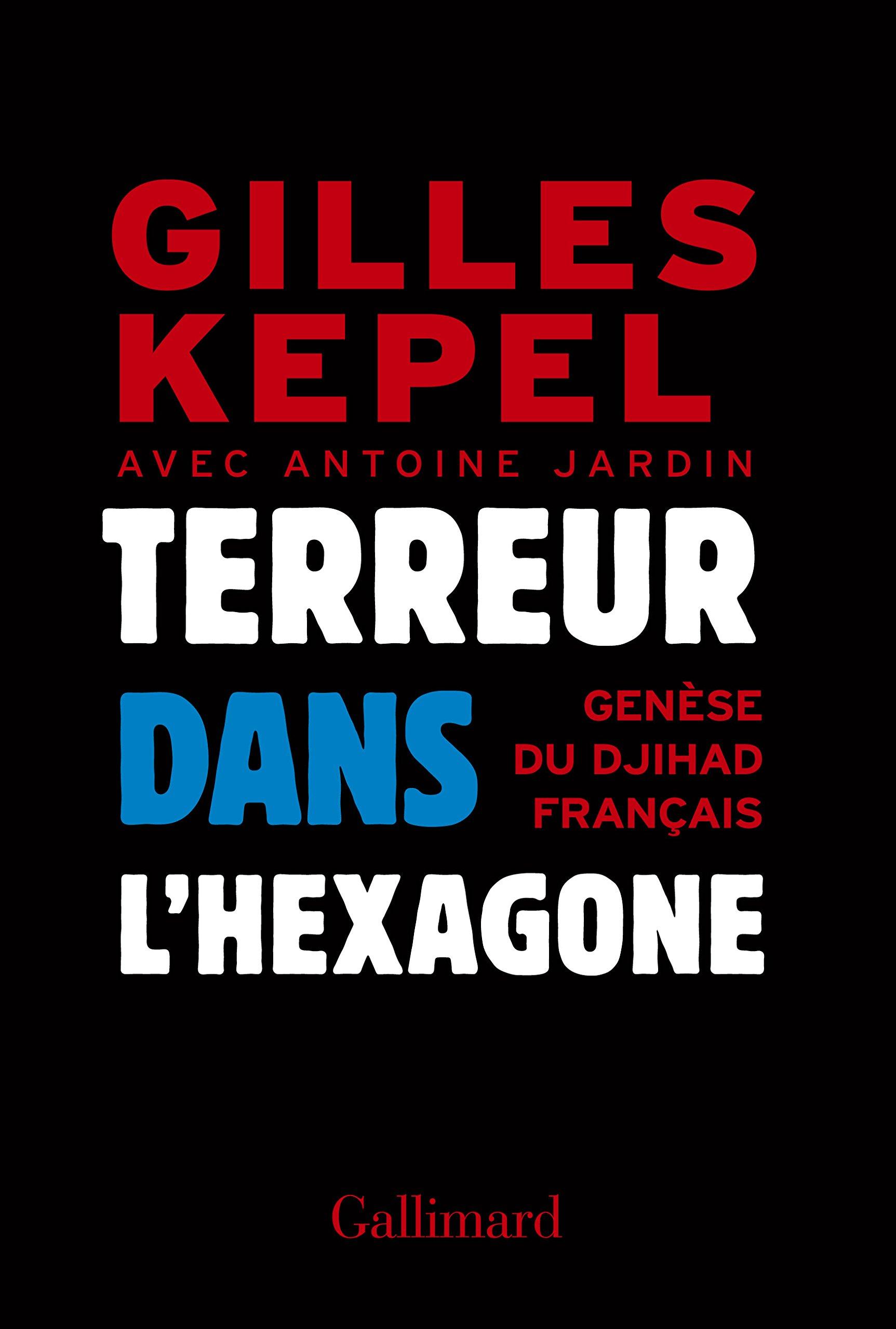Terreur dans l'Hexagone: 2005-2015, genèse du djihad français