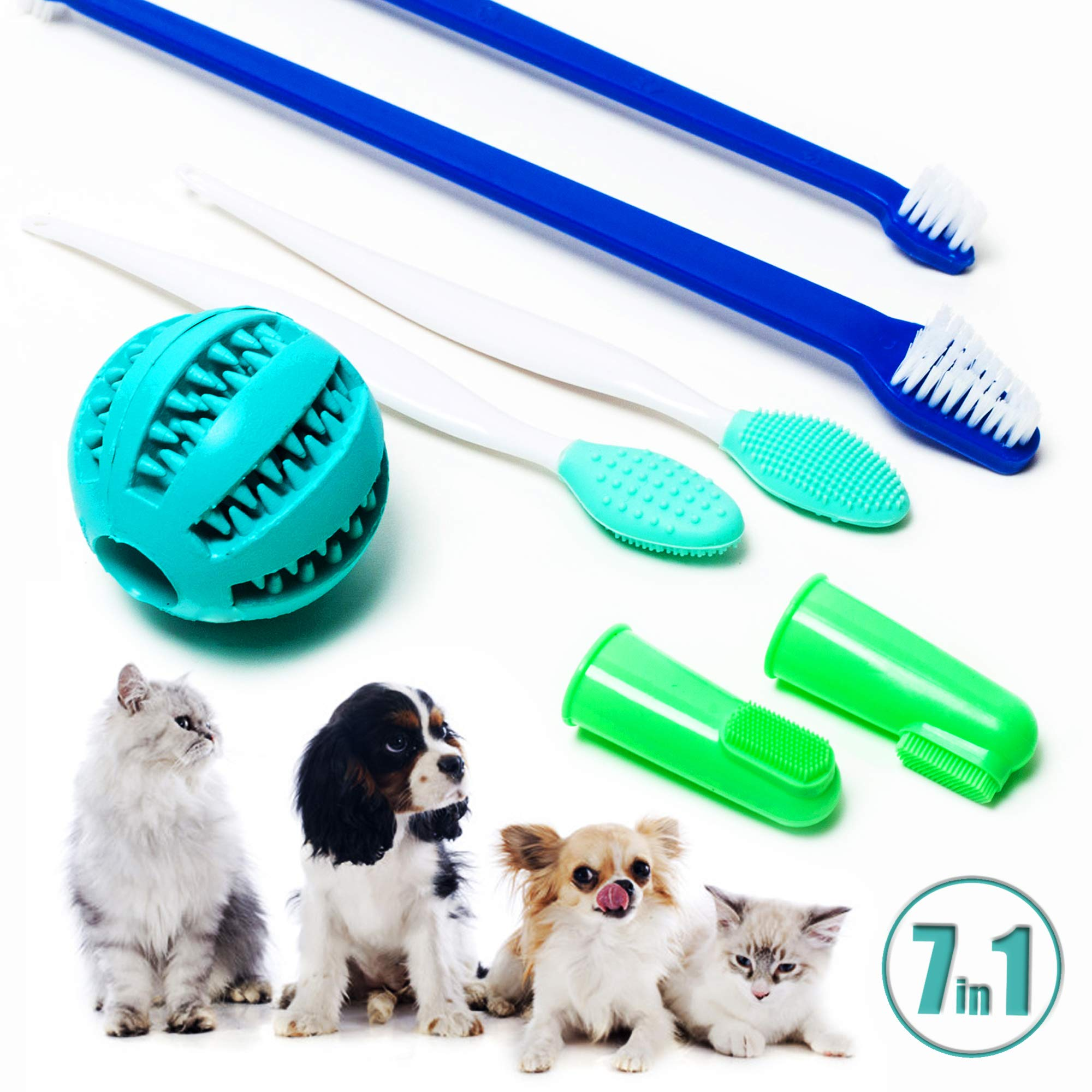 EC Markt Dog and Cat Toothbrush Kit - 7 in 1 Pack, Pet Oral Care Set with Soft Bristle Brushes, Silicone Finger Brush and Chewing Ball for a Professional Cleaning at Home by EC Markt