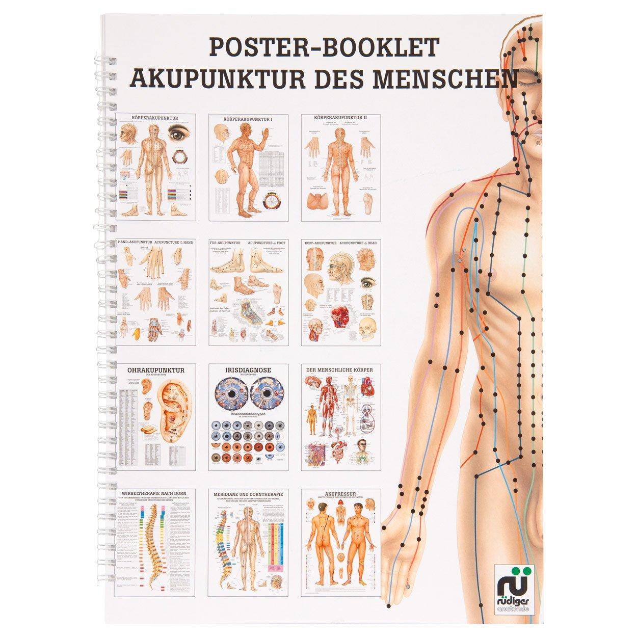 Akupunktur des Menschen Mini-Poster Booklet Anatomie 34x24 cm, 12 ...