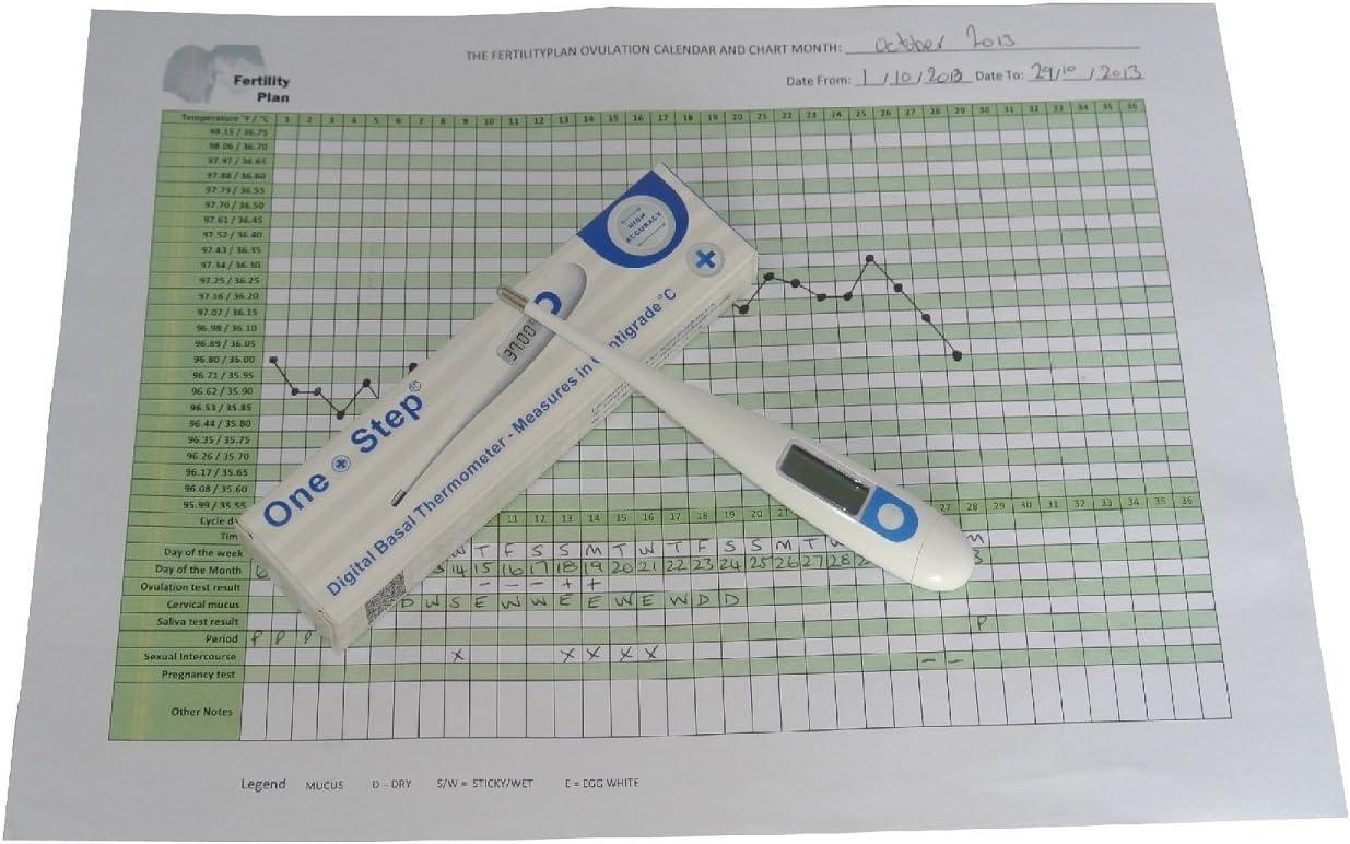 Digital Decimal Digital Thermometer