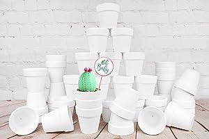 My Urban Crafts 40 Pcs White Terra Cotta Pots 2.5 inch Small Succulent Pots White Ceramic Pots White Terracotta Flower Pots for Succulents Cactus Display, Crafts, Wedding Favors (Matte White Bisque)
