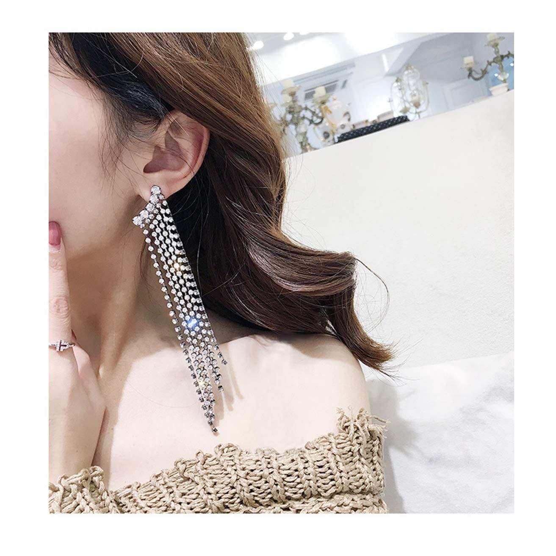 Dream Date 21 Dimond Mounted Long Metal Tassel Silver Dangle&Drop Earring