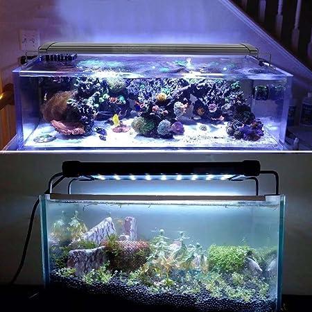 Gosear® iluminacion Led para Acuarios, Lámpara Acuario Luces para Acuarios y Estanques 3 W Se Aplica a 30-50 cm 42 Leds (39 Blanco + 3 Azul) con Enchufe EU: ...