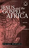 Jesus And The Gospel In Africa: History And Experience (Theology in Africa Series)