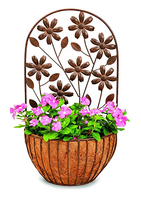 Amazon Com Deer Park Ironworks Wb148 Floral Wall Planter With Coco