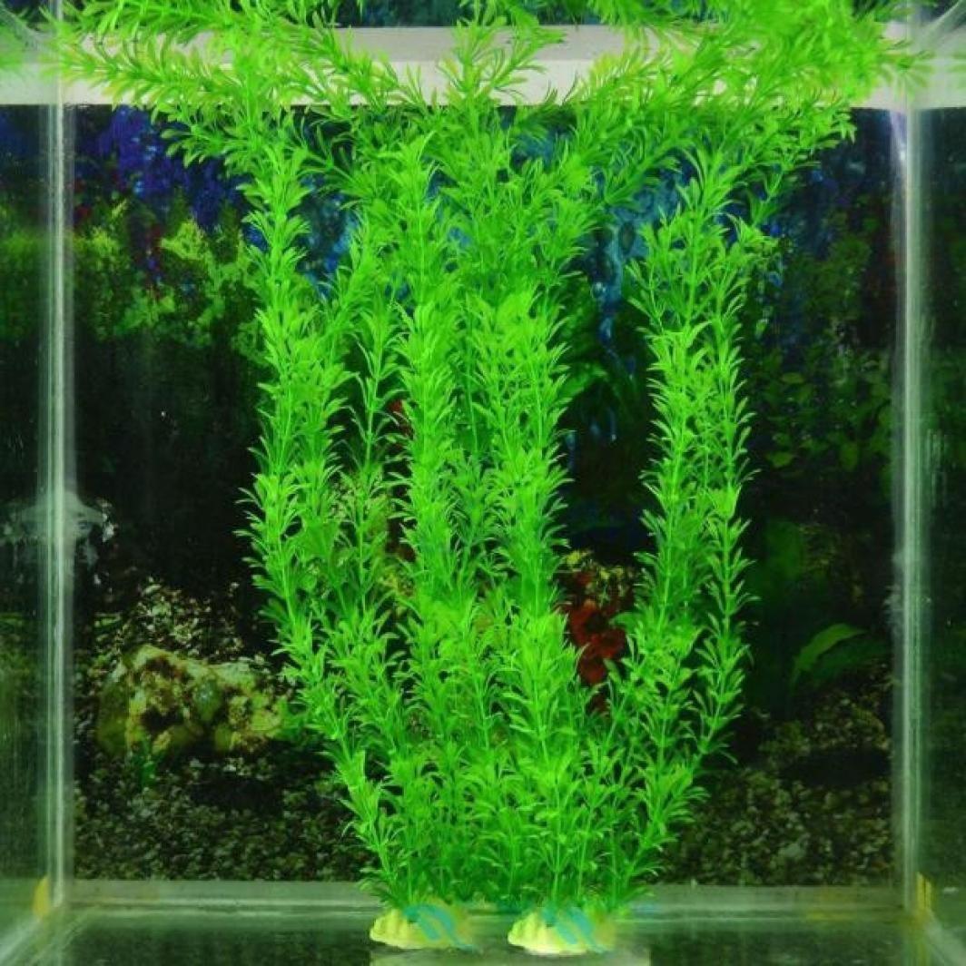 Plantas de acuario cuadradas decorativas para acuario de 3 piezas, 25,4 cm, color verde: Amazon.es: Productos para mascotas