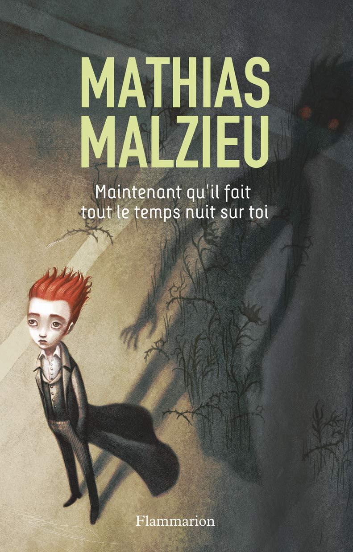 Maintenant Quil Fait Tout Le Temps Nuit Sur Toi By Mathias Malzieu