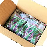 【緑肥 タネ】ヘアリーベッチ種子10kg 普通種